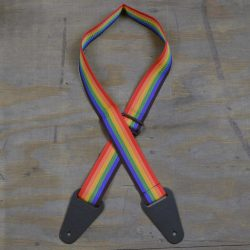 Rainbow Webbing with Heavy Duty Leather Ends Guitar Strap